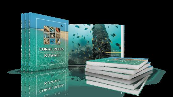 fotolio ektyposeis promotion polyteleis ekdoseis coral reefs of kuwait tiny