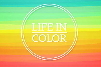 fotolio life in color